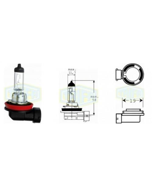 Лампа H11 12V 55W socket  PGJ19-2