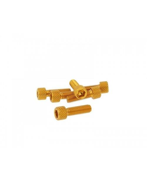 Болты Моторные M6x20 золот