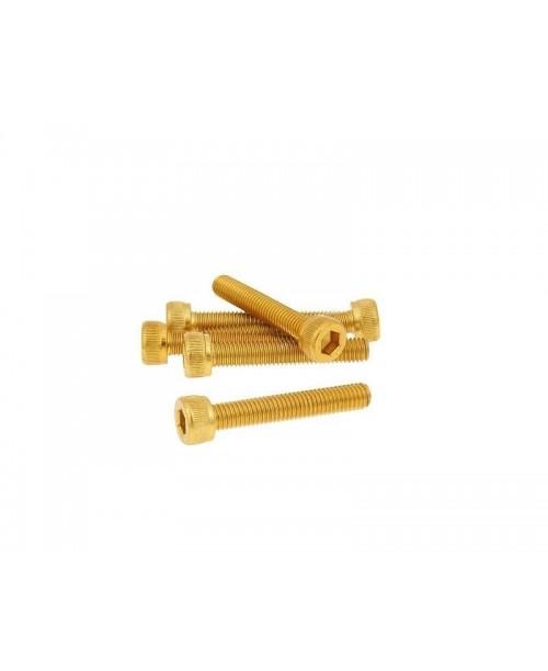 Болты Моторные M5x30 золот