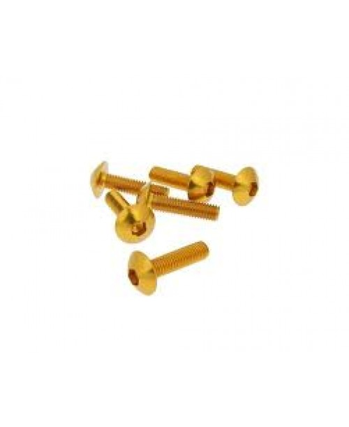 Болты для пластика M5x20 золот
