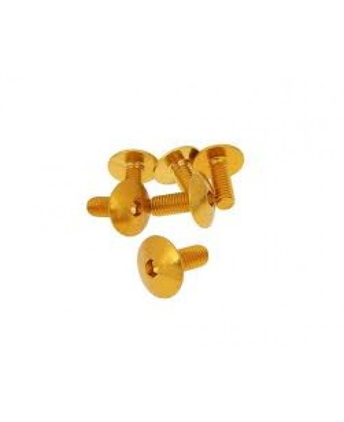 Болты для пластика M6x15 золот