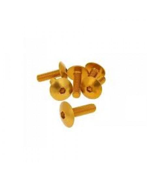 Болты для пластика M6x20 золот